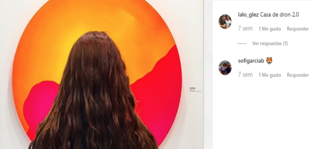 La Presencia de Zsona Maco 2019 en Instagram:  Análisis Semiótico y Textual de Publicaciones de sus Visitantes